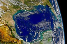 Gulf of Mexico forecast