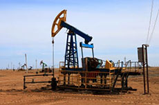 Mongolia's fiscal terms attractive as oil shale interest grows