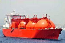Saint-Gobain spring-energized seal for LNG transfer