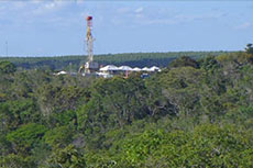 Alvopetro discovers hydrocarbons onshore Brazil