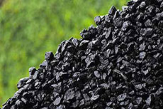 Developing Mozambique's coal industry