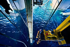 FMC awarded 40 million dollar subsea contract by LLOG