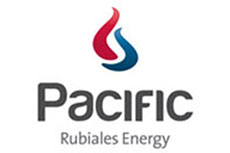 Pacific Rubiales and ALFA agree on joint venture