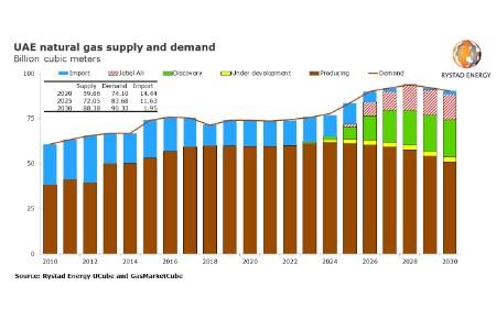 Rystad Energy: UAE will still require gas imports despite Jebel Ali find